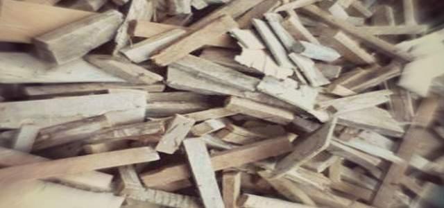 jual beli kayu bakar